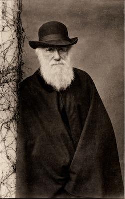 Portrait of Charles Darwin, © Auckland Museum.
