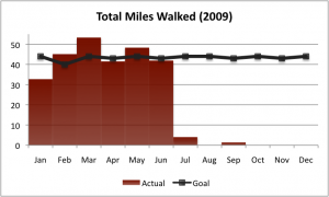 2009-Q3-walking-goal